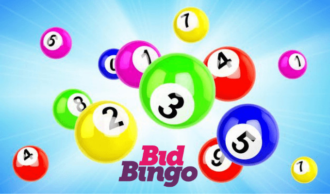 BidBingo Casino Review